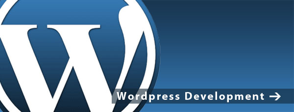 Wordpress Development - TH Web Consulting St Paul Minnesota